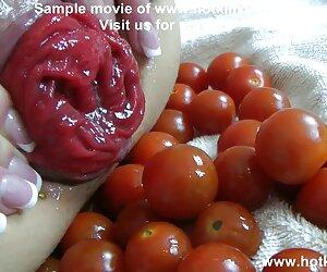 سبزیجات مقعد بازی 50