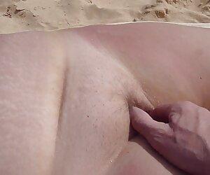 همسر لعنتی لعنتی در ساحل گربه پر شده است
